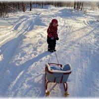 Трое на заснеженной полянке, я, зима и санки. :: Любовь Чунарёва