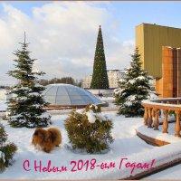 С Новым Годом ! :: Роланд Дубровский
