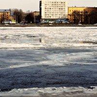 Река Нева. :: Марина Харченкова