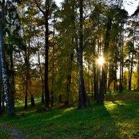 Осень :: Oleg S