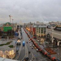 Москва новогодняя :: ninell nikitina