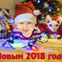 Новый Год 2018 :: derber d