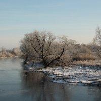 Озеро Завьяловское :: Олег Афанасьевич Сергеев