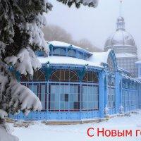 С Новым годом, друзья! :: Леонид Сергиенко