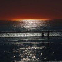 Beach. :: Евгений Мокин