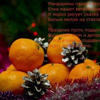 С Новым Годом! :: Татьяна Евдокимова