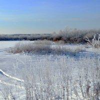 Прогулки в декабре :: Вера Андреева