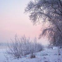 Зимняя прогулка :: юрий Амосов