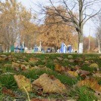 Осень :: Наталья Петракова