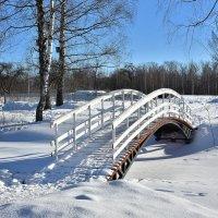 Зимой в Демьяново :: Oleg S
