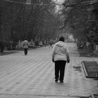 По воде, аки посуху. :: Юрий Гайворонский