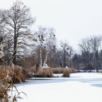 Первый снег :: Николай Танаев