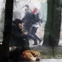 Год Собаки (цветной вариант) :: Николай Семёнов