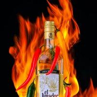 текила просто огонь :: вадим