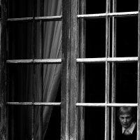 окна :: Мария Царькова