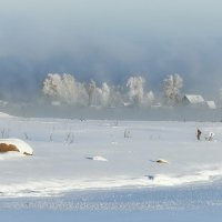 январь :: зоя полянская