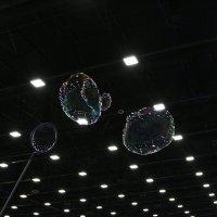 волшебствоиз пузырей :: Ольга ОК Попова