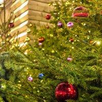 Рождество приближается :: Александр Лебедевъ