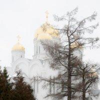 Дивеево :: Владимир Новиков