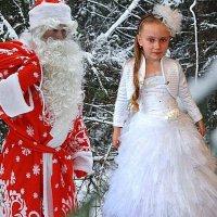 Новогодняя сказка. :: Анатолий