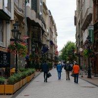 Прогулки по Будапешту ... :: Алёна Савина