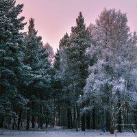 Зимняя сказка :: Екатерина Агаркова
