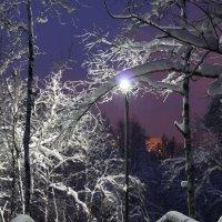 Рождественский вечер в заполярье :: Ольга