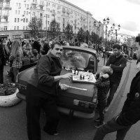 Шахматы :: Александр Зизенков