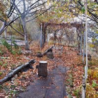 Осени мотивы.  Октябрь... .. :: Александр Резуненко