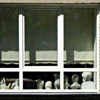 За окном :: veera (veerra)