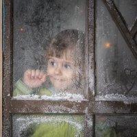 за окошком Новый год :: Елена Черненко
