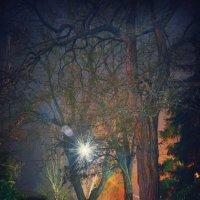 ночь в городе :: Александр Довгий