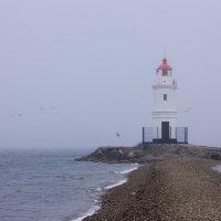 Токаревский маяк, Владивосток :: Маргарита Си