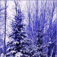 Мой город вновь зимой одет ... :: Евгений Юрков