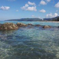 Самое время пускаться на поиски морены :: liudmila drake