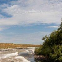 Целебные источники мёртвого озера :: Dr. Olver ( ОлегЪ )