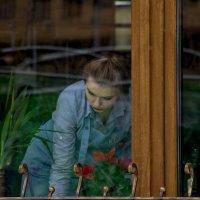 Девушка в окне. :: Анатолий. Chesnavik.