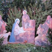 С Рождеством Христовым! С началом жизни новой! :: Дмитрий Никитин