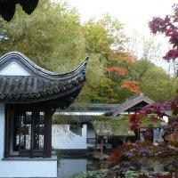 Китайский сад Рурского университета, г. Бохум :: Раиса Шиллимат