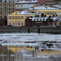 Зима. :: Марина Харченкова