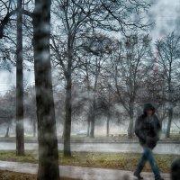 Питер, а за окном влажно,мокро,сыро,да просто типа дождь! :: Юрий Плеханов