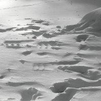 снежок :: Ирина ***
