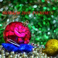 Со старым Новым Годом! :: Marina Timoveewa