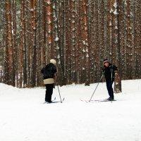 Встреча в лесу. :: Прима Игорь Кондратьевич