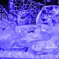 Лёвушка ледовый :: Лариса Лунёва