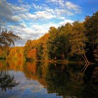 Осенних красок отраженья, восторг безудержный пленит. :: Alex