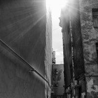 Солнце заглянуло :: Юлия Никитина