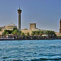 На берегах Дубаи-крик :: Андрей K.