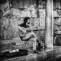 Уличный музыкант :: Владимир Брагилевский