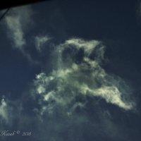 Облачный образ собаки. :: Елена Kазак